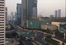 移転価格 新興国